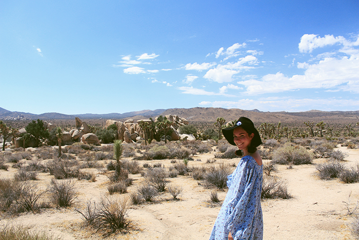 Jessthetics / Joshua Tree
